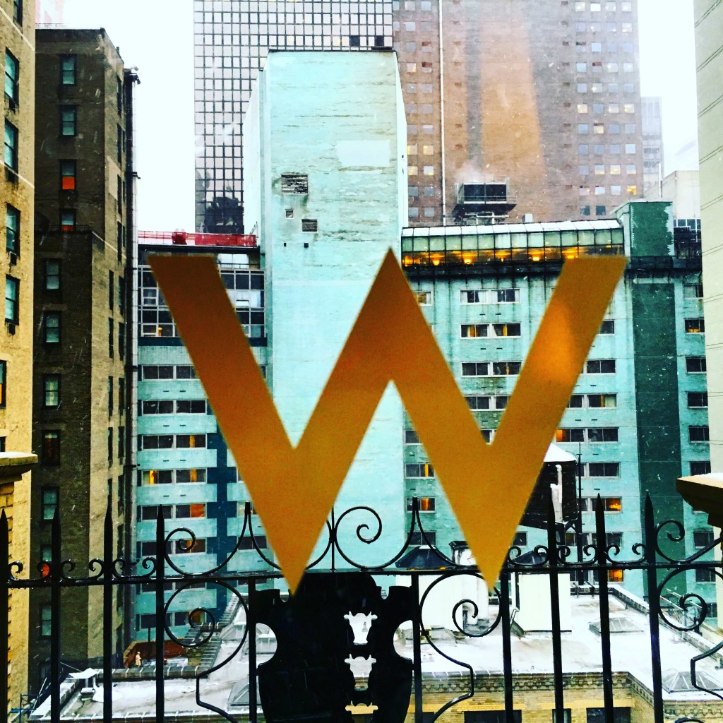Fantastic Suite im W New York - Ausblick