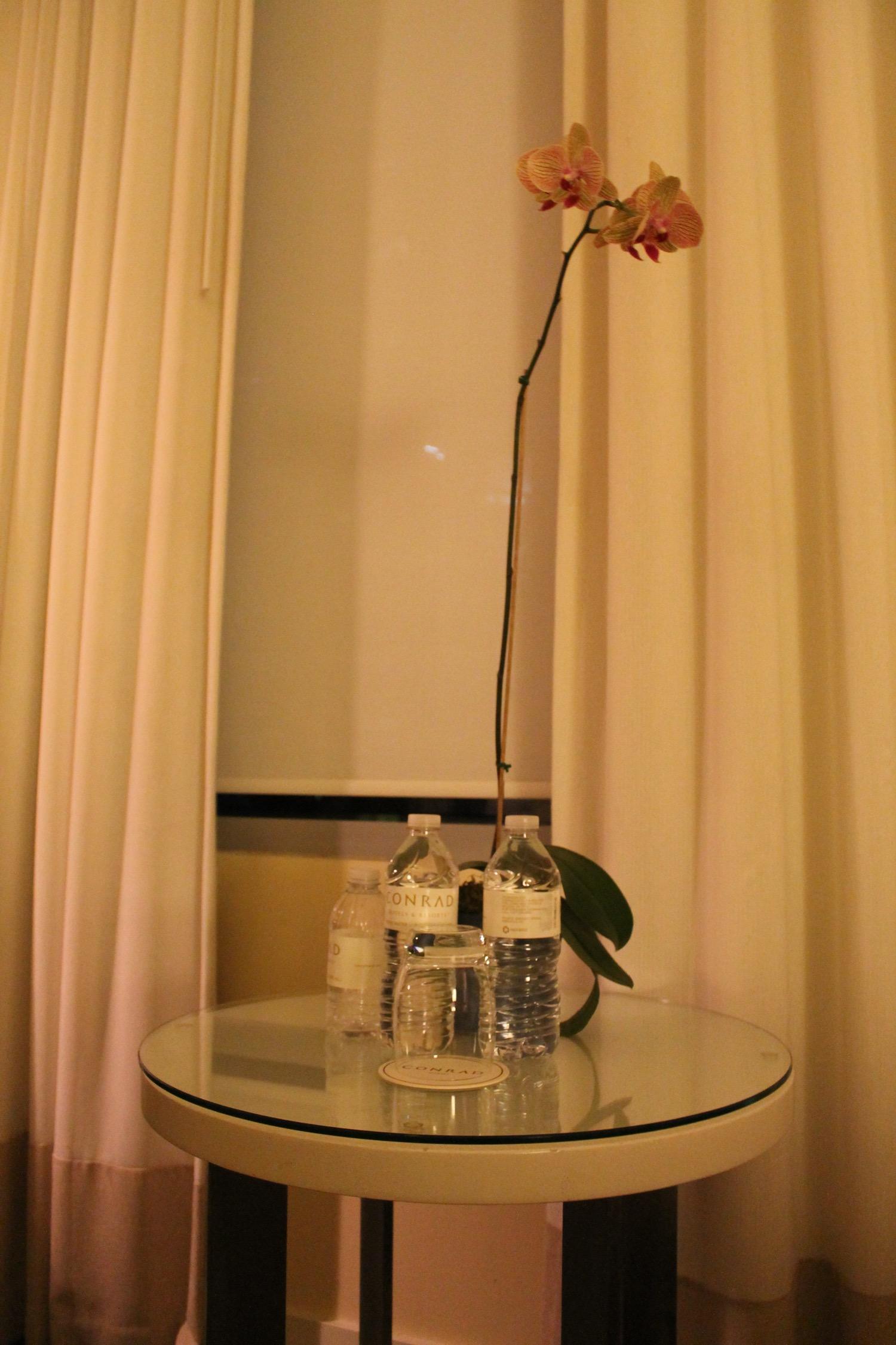 Orchidee im Conrad Miami