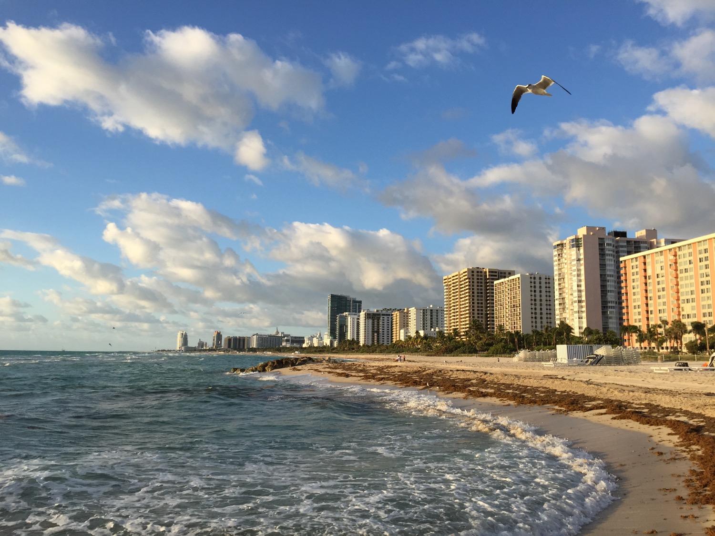 Edition Miami Hotel - - 23