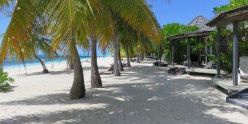 Business Class auf die Malediven fliegen