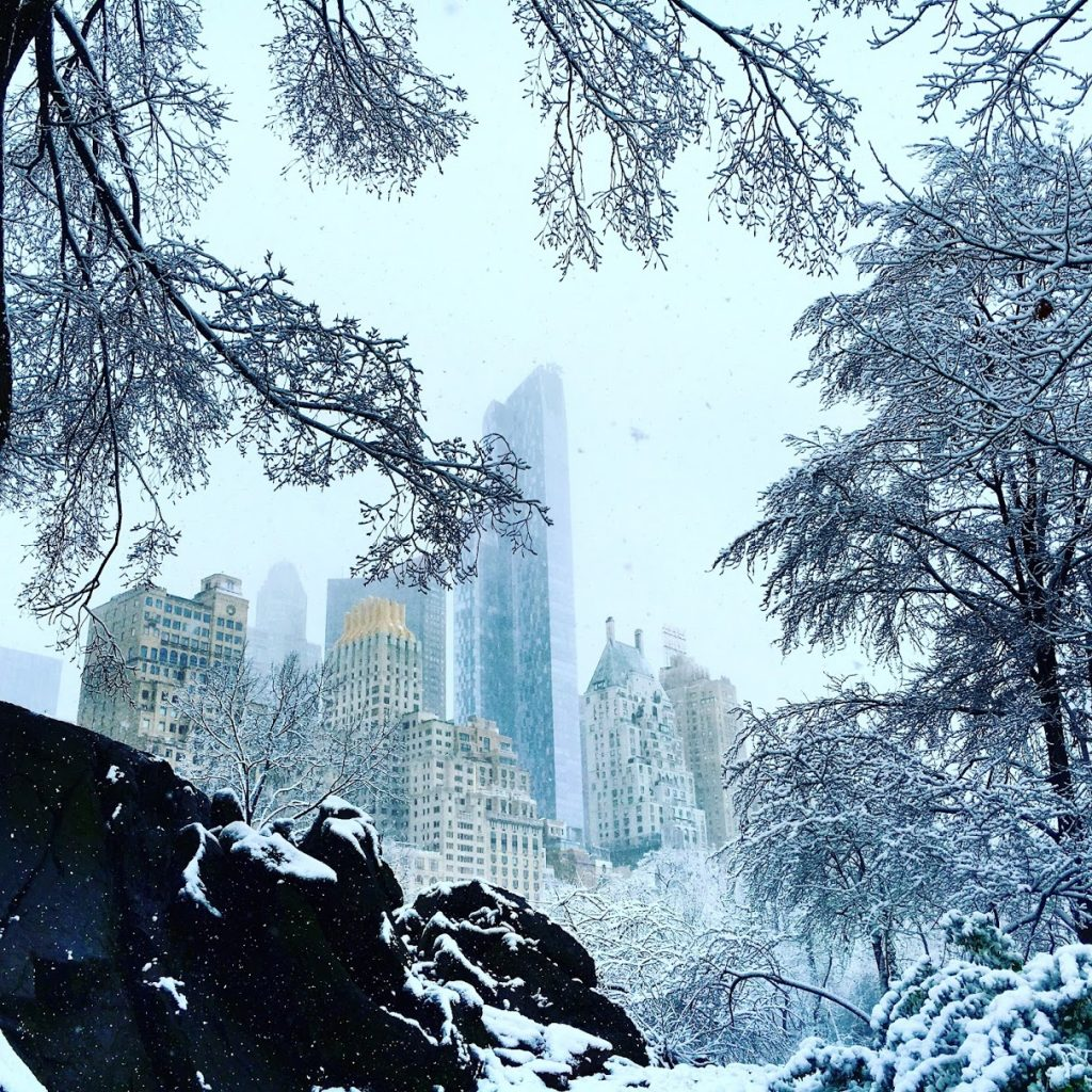 Günstig nach New York fliegen verschneiter Central Park