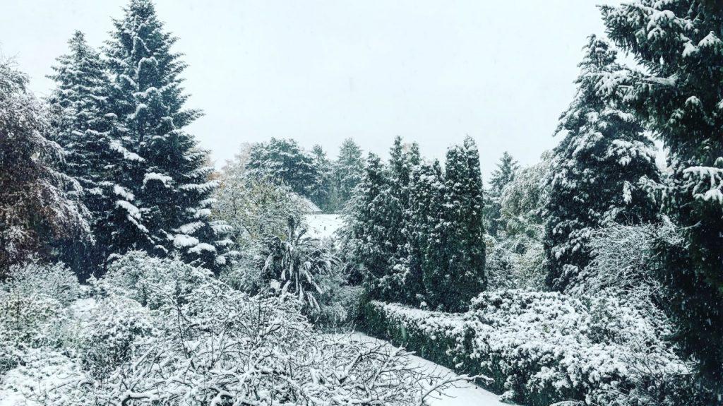 InsideFlyer Wochenrückblick Der erste Schnee