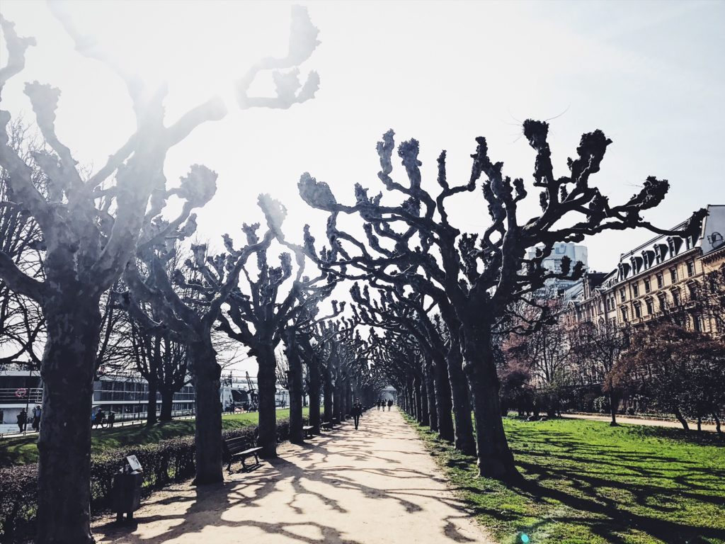InsideFlyer wochenrückblick Frühling in Frankfurt