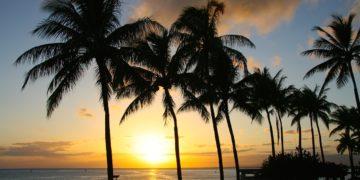 Business Class nach Hawaii