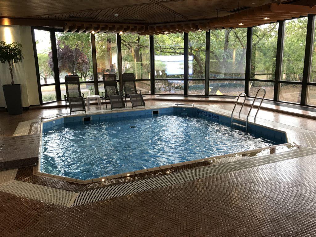 The Westin Bellevue Dresden Pool