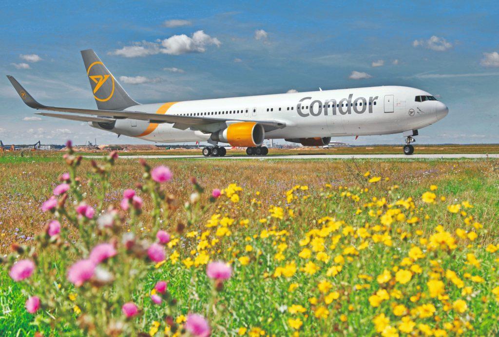 Condor stellt Ziele für die Sommerferien vor - InsideFlyer DE